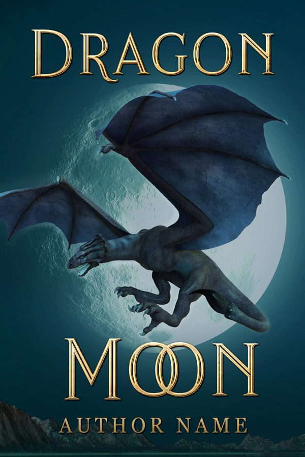 A fantasy book cover with a wyvern